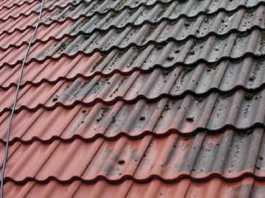 rens og fjern mos og alger på taget